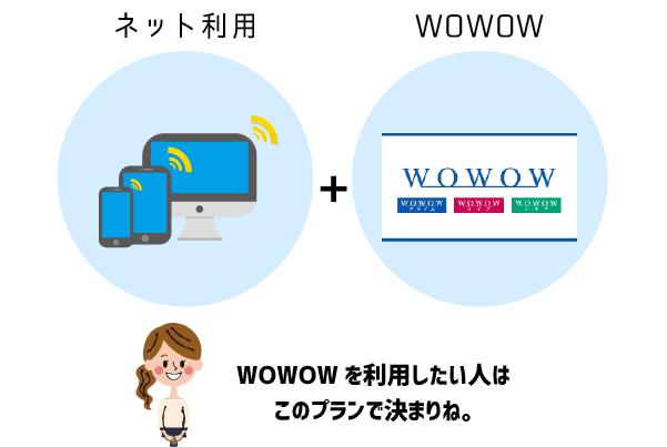レオネットのプラチナプラン(ネット利用+WOWOW)